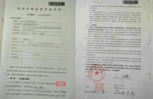岳阳犬证办理流程